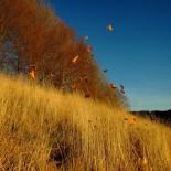 Un tramonto d'autunno