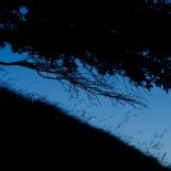 Nightly Windy